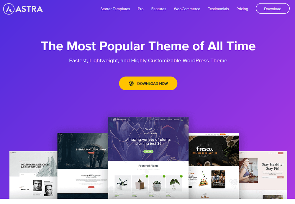 Free theme that's popular and comes highly recommended