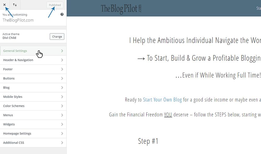 Your WordPress Dashboard - Theme Customizer Page